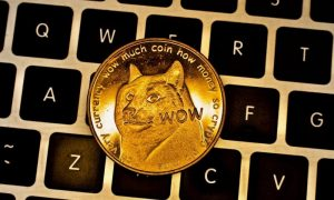 What is dogecoin and how it impacts the investment sector?